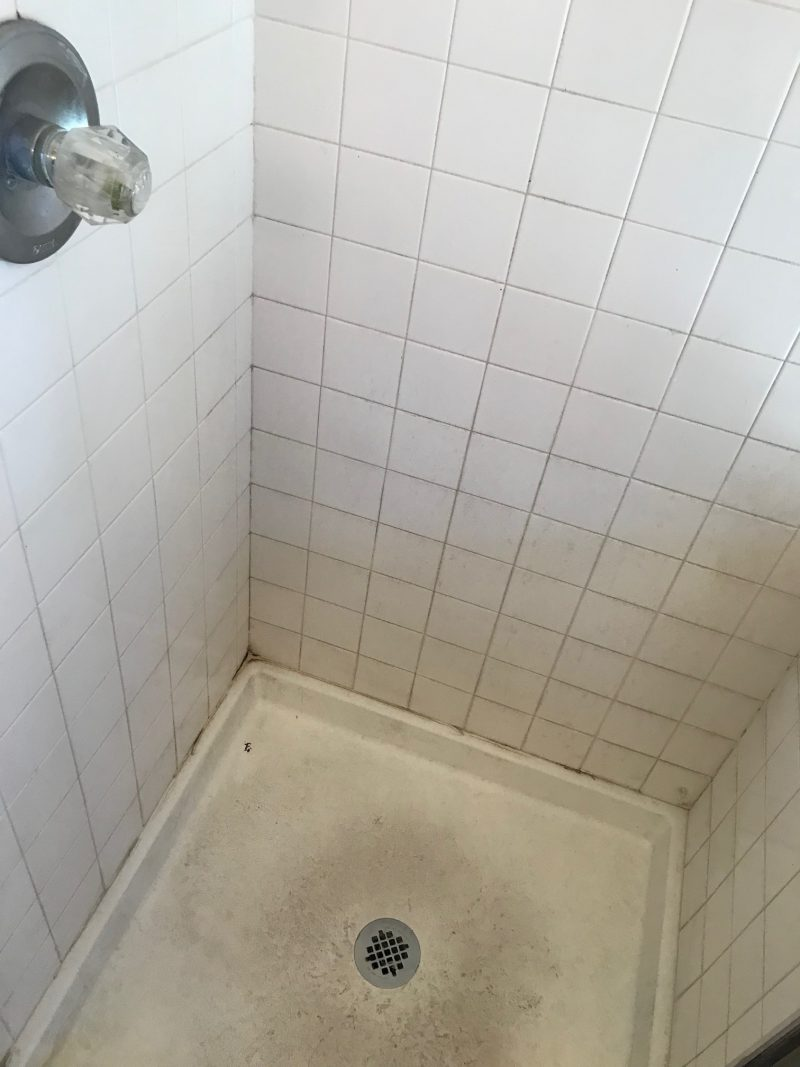 Wondrous Ways To Keep Bathroom Grout Clean The Grout Specialist Home Remodeling Inspirations Genioncuboardxyz